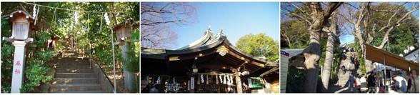 20160102_検見川神社.jpg
