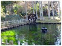 20160207_湧き水.jpg
