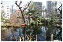 20160227_愛宕神社の池.jpg