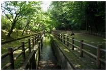 20160807_大町自然公園3.jpg