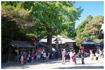 20161105_二宮神社.jpg