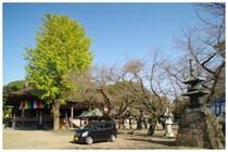 20161106_中山法華経寺.jpg