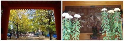 20161106_八幡葛飾八幡宮.jpg