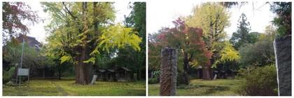 20161112_谷田の西福寺.jpg