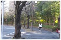 20161212_散歩中.jpg