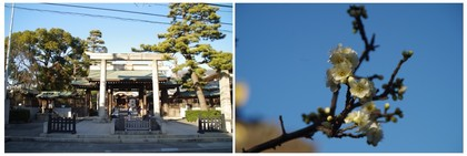20170204_六郷神社.jpg