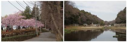 20170304_大町自然公園.jpg