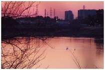 20170318_調整池の朝.jpg