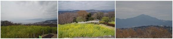 20170325_吾妻山公園.jpg