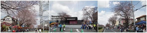 20170402_五香六実さくら祭り.jpg