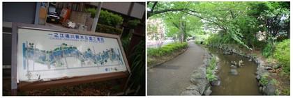 20170701_境川親水公園.jpg