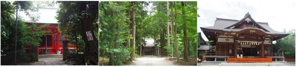 20170722_林の中の神社.jpg