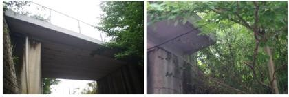 20170811_逆井の高架.jpg