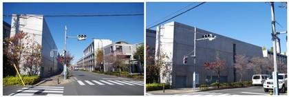 20171124_仙川東京アートミュージアム.jpg