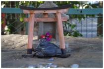 20180114_道野辺八幡の布袋.jpg
