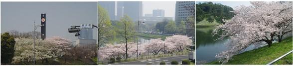 20180328_議事堂前.jpg