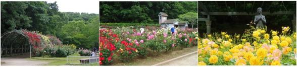 20180513_大町自然公園.jpg