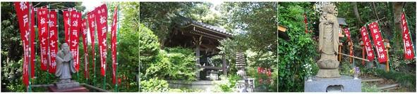 20190503_八柱徳蔵院.jpg