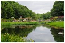 20190519_大町公園のバラ園.jpg