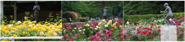 20190519_大町公園のバラ園_銅像.jpg