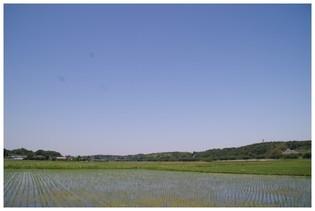 20190525_田園.jpg