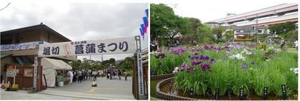 20190601_堀切菖蒲園.jpg
