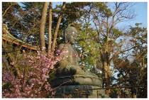 20200224_中山法華経寺1.jpg