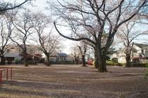20200402_江戸川台9号公園.JPG