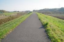 20200409_利根運河.JPG