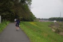 20200427_運河の道.JPG