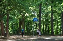 20200514_公園.JPG