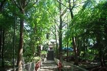 20200517_二宮神社.JPG