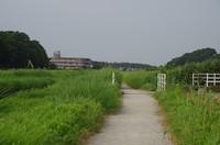 20200808_木戸川沿い.JPG