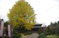 20201108_泉倉寺.JPG