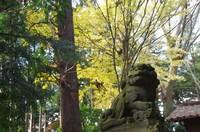 20201206_神々廻駒形神社.JPG