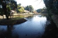 20201220_結縁寺前の池.JPG