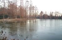 20201222_水辺公園.JPG