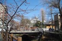 20210213_坂川沿い.JPG
