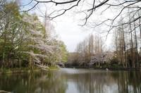 20210328_貝柄山公園1.JPG