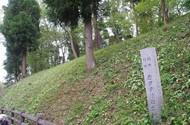 20210403_カタクリ群生地.JPG