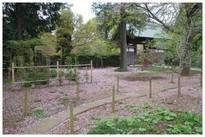 20210403_観音寺の門.JPG
