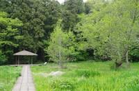 20210417_大町自然公園.JPG