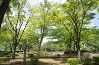 20210424_七次第一公園.JPG