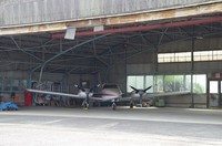 20210501_飛行機1.JPG