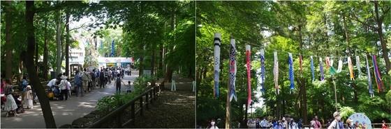 20210504_市川動植物園入り口.jpg