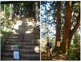 210161203_山頂への道.jpg