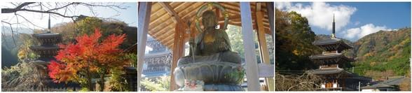 210161203_浄発願寺.jpg